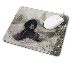 Personalised mouse mat image