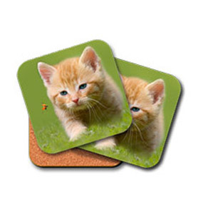 Set of two coasters with single image